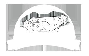logo-IBio-web.png