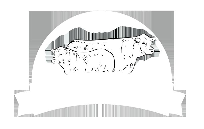 logo-IBio-web2.png