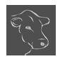 separador-vaca.png